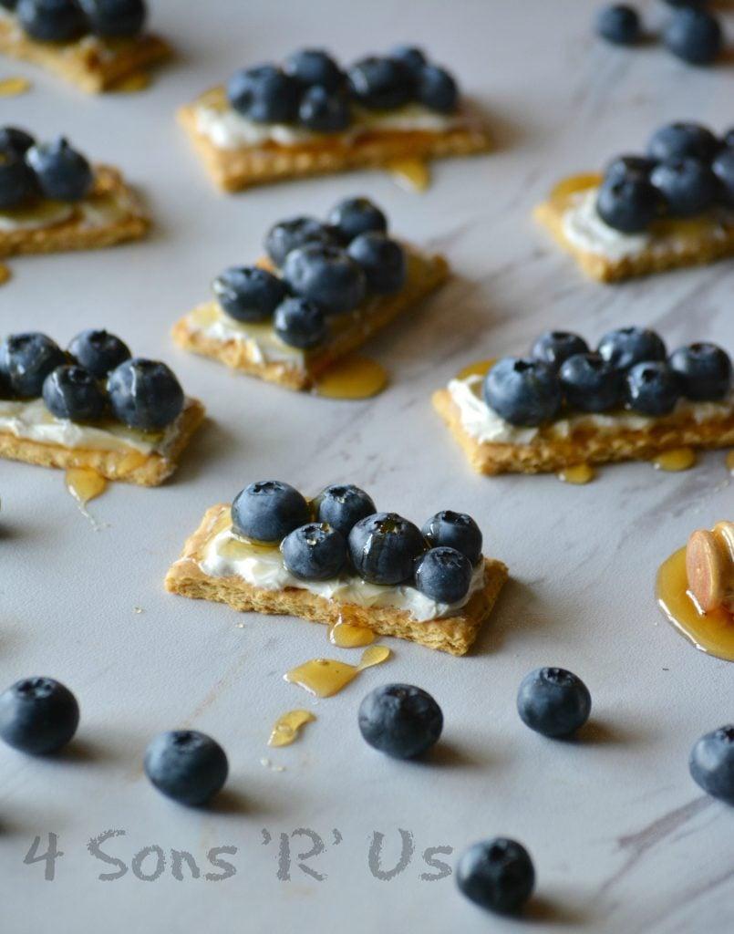 Blueberry Cheesecake Snack Bites