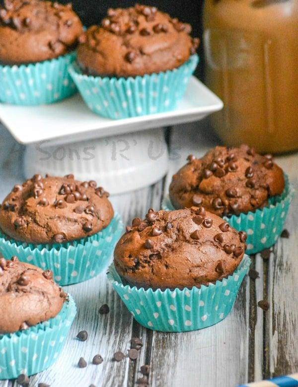 Chocolate Chocolate Chip Mocha Muffins