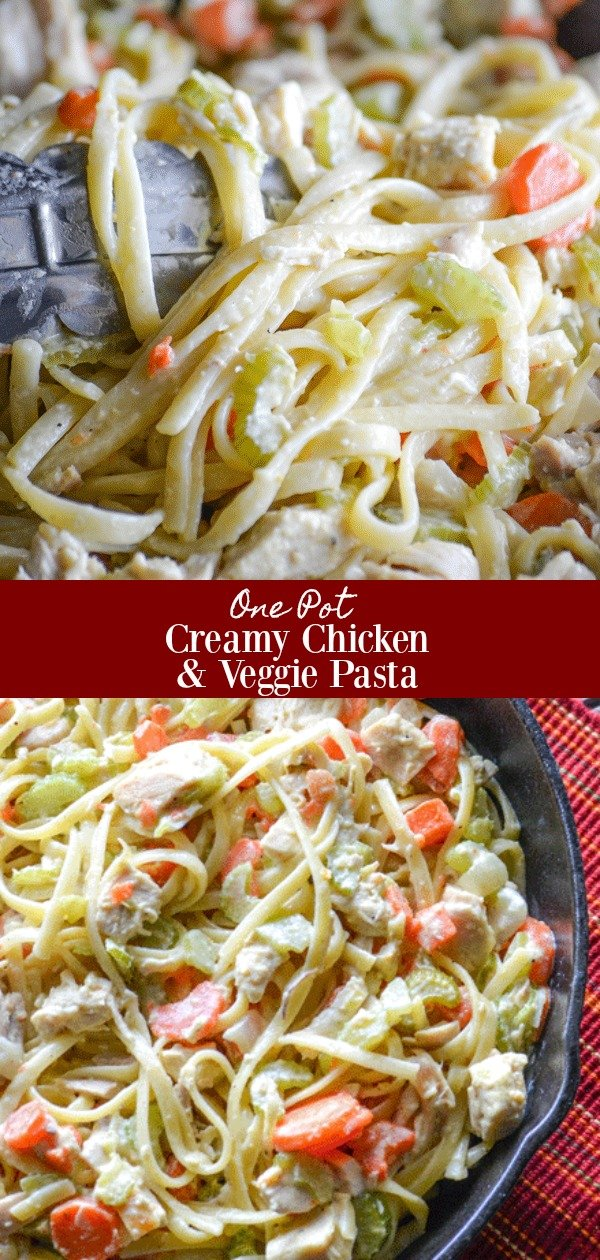 This One Pot Creamy Chicken & Vegetable Pasta is the meal every busy parent's week night dreams are made of. Chock full of healthy veggies, pasta the kids love, all tucked up in a savory cream sauce. It's comfort food made simple.