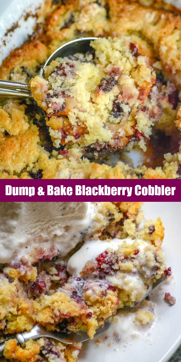 A traditional Southern Summer dessert, you can't go wrong with adding your favorite fruit into a sweet cobbler. Quick, easy, and only 4 ingredients- this Dump & Bake Blackberry Cobbler is a budget friendly dessert that absolutely tastes gourmet.